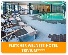 Fletcher Welness-Hotel Trivium**** in Etten Leur